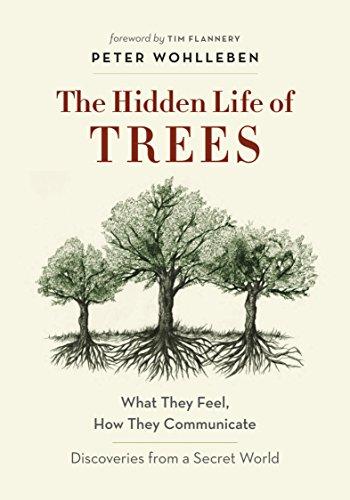 Hidden Life of Trees by Peter Wohlleben